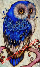 SS 0219 Blauwe uil