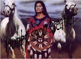 PE 0111 Indiaan met 2 paarden