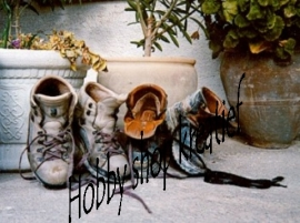 PE 0090 Stilleven schoenen
