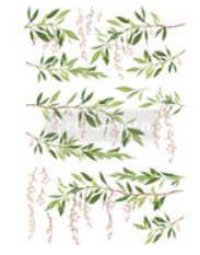 re-design decort ransfers spring branch