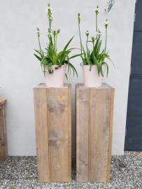 steigerhouten zuil 100x30x30 loogbeits