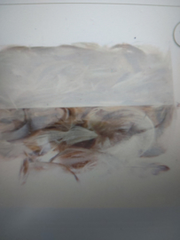 Veren bruin-wit 6-10cm 30gram
