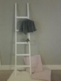 Fruit ladder 170x40 wit
