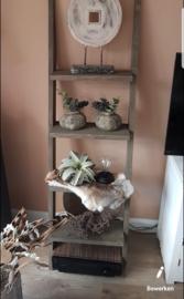 decoratie ladder taupe 170x50x19