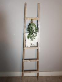 fruit ladder 170x40 antiek bruin