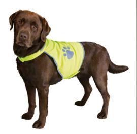 Reflective dog back safety vest