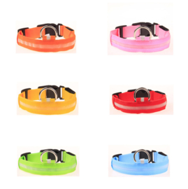 Hund - Katze Hundehalsband mit LED - Beleuchtung