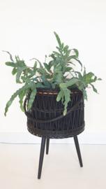 Plantenkorf / naaimand op hoge poten - 01 – vintage