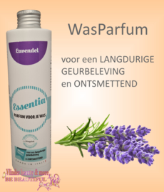 Wasparfum Lavendel