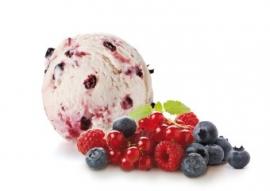 Yoghurt Bosvruchten