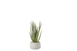 Aloe+Pot Kunststof Grn/Grijs