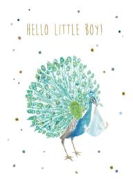 Luka Jacobs - Hello little boy