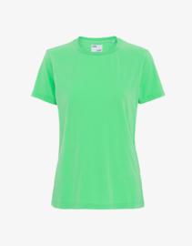 Colorful standard - organic tee spring green