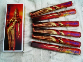 Padmini  Spiritual-Guide (Rood)  (✱)