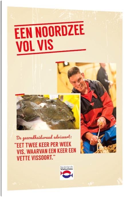 Folder 'Een Noordzee vol vis' (25 stuks)