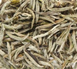 Yunnan Old Bush Silver Needle