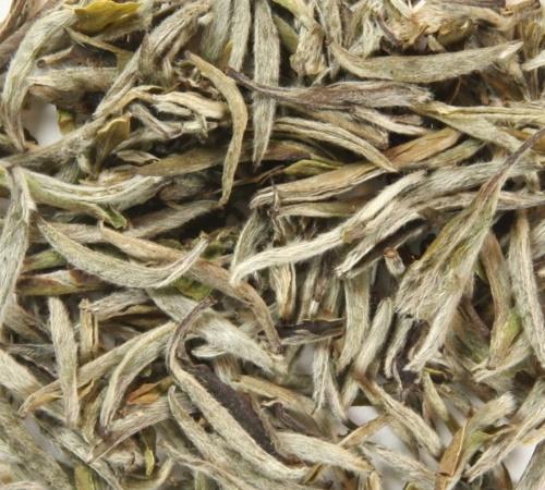 Yin Zhen Tea,  silver needle, BIO