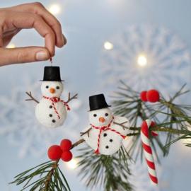 Sneeuwpop accessoires - Hoeden, Neuzen en Armen