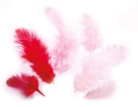 Veren - 3-10 cm - roze en rood - 10 gr