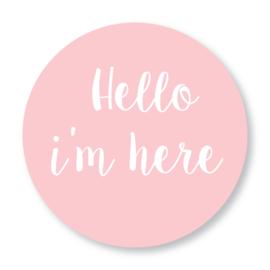 Sluitzegel Hello roze