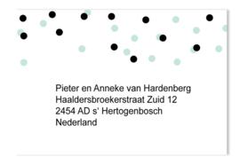 Adressticker dots mint/zwart