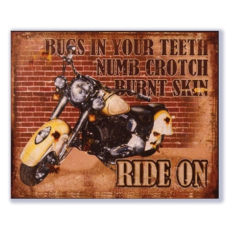Bugs in your teeth, numb crotch, burnt skin, ride on