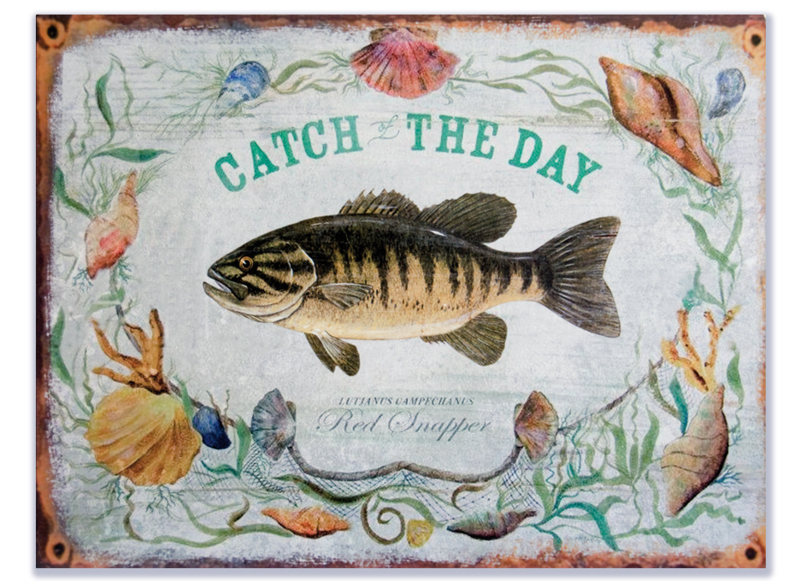 Catch the day