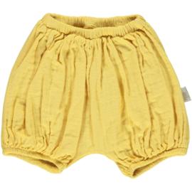 POUDRE ORGANIC  I  BLOOMER  warm yellow