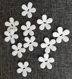Bloemetjes wit (10 stuks)