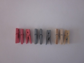 Mini wasknijpers (25 stuks)