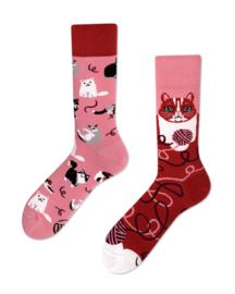 Many Mornings - sokken unisex - mismatched Playful Cat