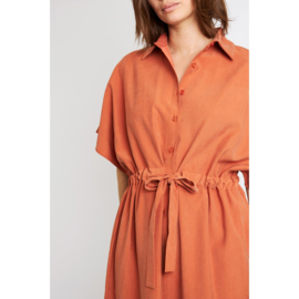 Chennai dress rust
