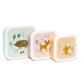 Petit Monkey Lunchbox set van 3