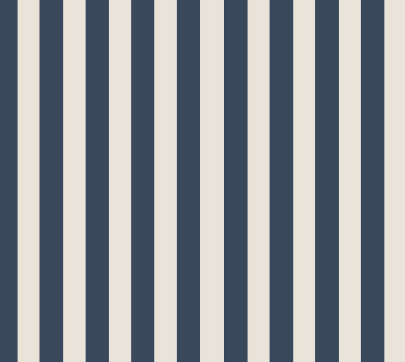 Organic Jersey - STRIPES DARK BLUE/ CREAM