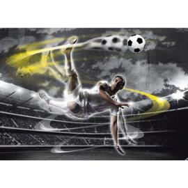 Fotobehang poster 1353 kinderkamer voetbal sport omhaal