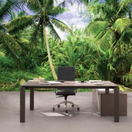 Fotobehang poster 4485 palm bomen bos tropisch regenwoud strand
