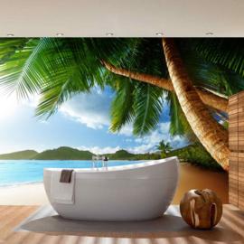 Fotobehang poster 0004 natuur strand palmboom bomen