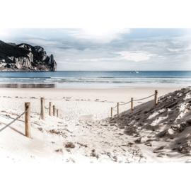 Fotobehang poster 2837 strand duinen zee