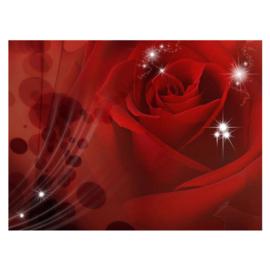 Fotobehang poster 1105 bloemen rozen roos rood