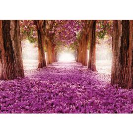 Fotobehang poster 0721 bomen roze bloemen
