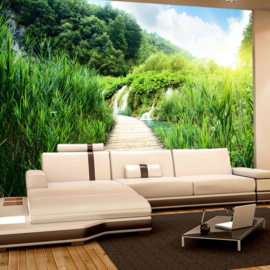 Fotobehang poster 0093 natuur  houten weg houten planken steiger riet bergen