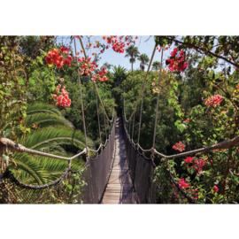 Fotobehang poster 0770 planten bomen bloemen groen brug