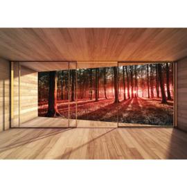 Fotobehang poster 3138 raam bomen bos zon kamer