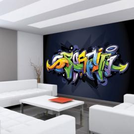 Fotobehang 409 graffiti 350 x 245
