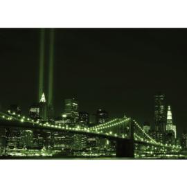 Fotobehang 0692 USA New York tower light groen brug