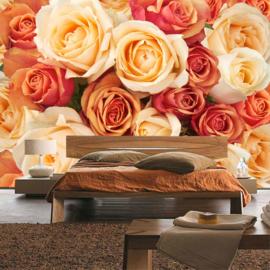Fotobehang poster 0191 bloemen rozen roos oranje roze