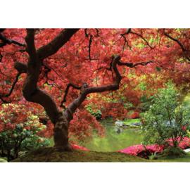 Fotobehang poster 0828 boom planten roze groen bladeren