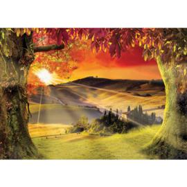 Fotobehang poster 0794 bomen zonsondergang herfst heuvels