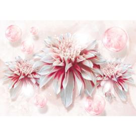 Fotobehang poster 2682 bloemen rozen kunst roos roze