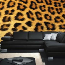 Fotobehang poster 0534 dier leopard luipaardvel